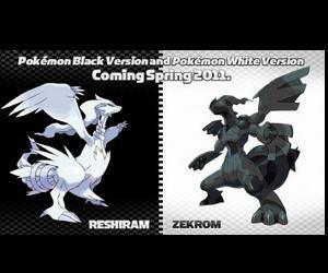 口袋妖怪黑白系列1+2专用模拟器
